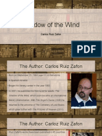 Shadow of the Wind 1st Report