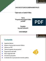 Proyectos de Inversión Pública - SNIP