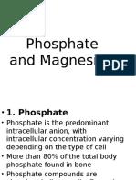 Phosphate & Magnesium Ustaza Liza