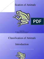 9297559 Classification of Animals Update