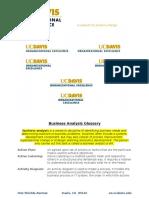 Business Analysis Glossary 2014 v2