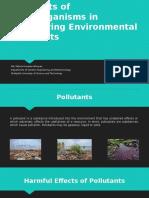 Prospects of Microorganisms in Detoxifying Environmental Pollutants