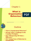 6897183 Chapter 1What is Organisational Behaviour
