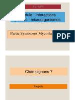 SVI6 PV Symbiose Mycorhizienne