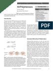 DNA POLYMERASES.pdf