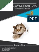 PAP Entrega Final Ricado Silva MKT13