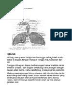 Histo Respirasi