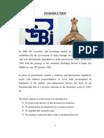 236802153-Sebi-Project.pdf