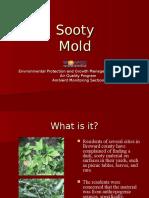 sootymoldpresentation.ppt