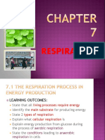 75217422 Respiration Chapter 7 Biology Form 4