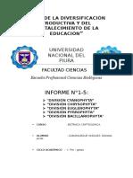Informe 1 - 5 Cripto