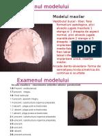 Studiu de Model Maxilar