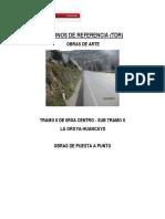 TDR Obras de Arte Ver02 .pdf