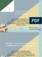 Diapos Farmaco II. Articulo