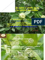 biblioteca_67_Manejo de suelos y diseño de la nutrición en cultivos de cítricos (1).pptx