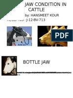 Bottle Jaw