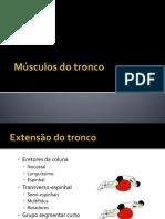 Músculos Do Tronco