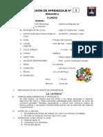 SESIÓN DE APRENDIZAJE N 17 iii unidad.docx