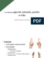 Cinesiologia Cotovelo, Punho e Mão