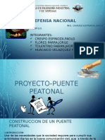 PROYECTO-PUENTE.pptx
