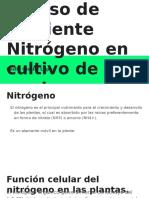 Alteración por deficiencia y exceso de nutriente Nitrógeno en cultivo de pepino. Leslie Lopez.pptx