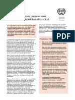 wcms_067592.pdf