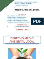 DERECHO-MEDIO-AMBIENTAL.pptx