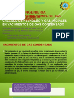 Calculo de Petroleo y Gas Iniciales en Yacimientos