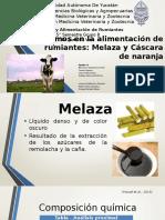 Eq4_MelazaYCascaraDeNaranja-correcciones