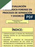 Caso Custodia.pdf