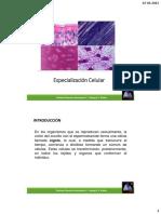 1°-C5-Especialización-celular