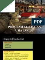 Program Usila Puskesmas