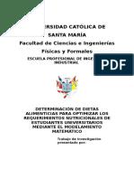 Estructura Del Trabajo de Aplicación Io1 Ucsm (1)