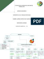 Mapa Conceptual ENZIMAS