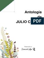 POEMAS COMPLETOS DE JULIO CASATI