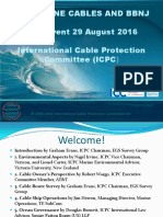 International Cable Protection Committee- Submarine Cables and BBNJ Presentation - Sept 2016