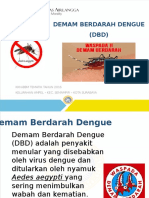 Penyluhan Dbd - Ampel