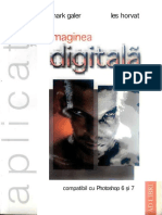 316237775 GALER HORVAT Imaginea Digitala