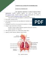 Anatomia Și Fiziologia Aparatului Respirator