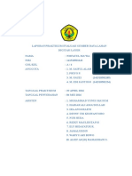 COVER-ESDL.doc