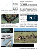 023739 184968580 Biologia Das Populacoes Volume 3 Amabis e Martho Blog Conhecimentovaleouro Blogspot Com by Viniciusf666 (1)(1)