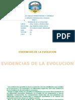 Evidencias de La Evolucion-ok