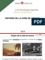 Historia , Biología y Ciclo Caña de Azúcar1