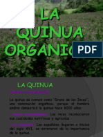46235301-QUINUA.ppt