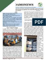 Sidamo News 48