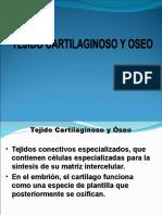 Cartilago Oseo 2009