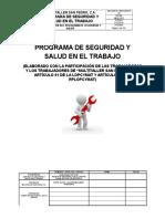 94994314-Psst-Multi-Taller-San-Pedro.docx