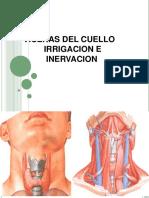 6 Glandula Tiroides_2c Laringe_2c Faringe y Traquea