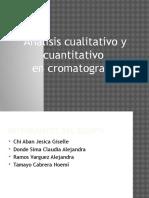 Analisis Cualitativo y Cuantitativo en Cromatografia