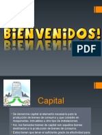 Tipos de Capitales